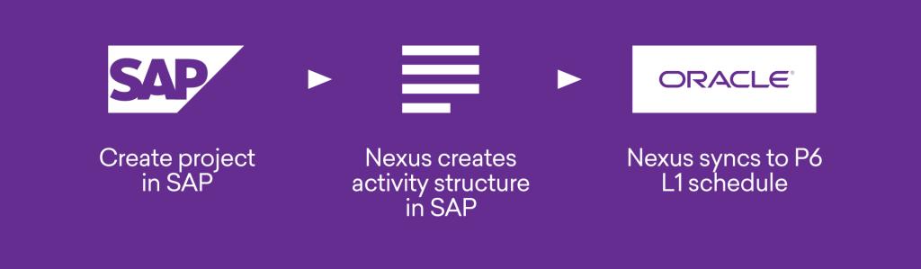 SAP / Primavera P6 project sync